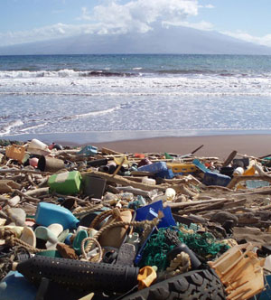 Plastic debris piled on the coast of Hawaii